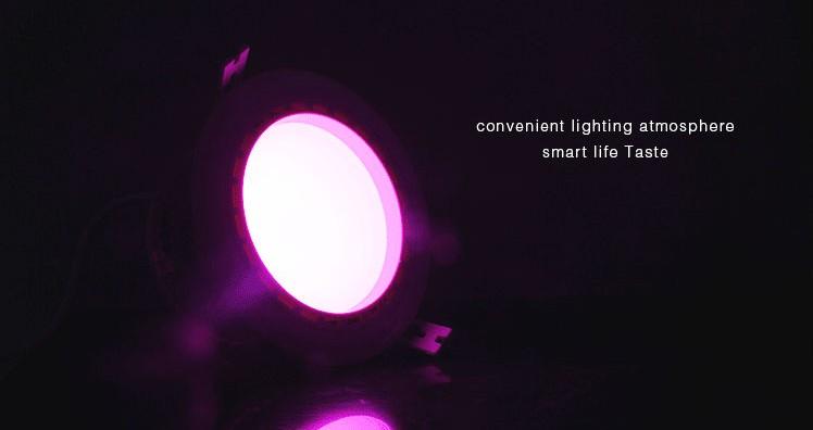 Mi_light_2.4G_15W_2